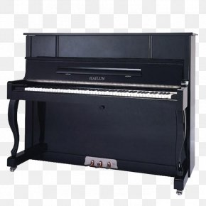 Piano - Hailun Digital Piano Musical Instrument Upright Piano PNG