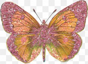 Bling - Butterfly Insect Scrapbooking Embellishment PNG