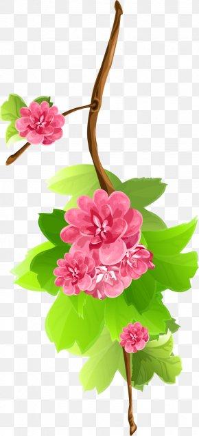 Flower - Flower Clip Art PNG
