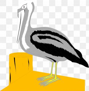Water Bird - Pelican Bird Dock Clip Art PNG