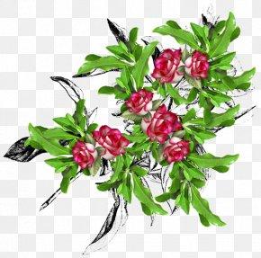 Flower - Floral Design Flower Bouquet Painting Clip Art PNG