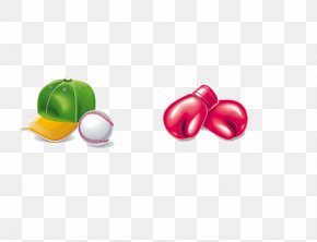 Boxing Gloves And Tennis - Euclidean Vector Icon PNG