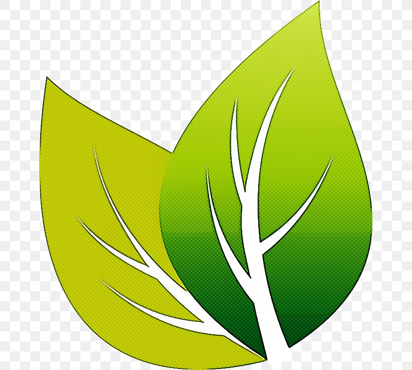 Green Leaf Logo Plant Clip Art, PNG, 663x737px, Green, Leaf, Logo, Plant, Symbol Download Free