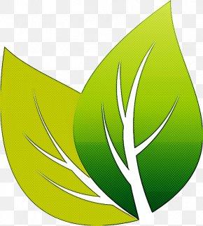 Symbol Plant - Green Leaf Logo Plant Clip Art PNG