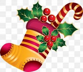 Plant Christmas - Christmas Stocking Christmas Socks PNG