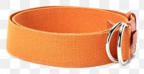 Orange Canvas Belt - Belt Canvas PNG