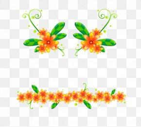 Orange Flower Dividing Line - Orange Flower PNG