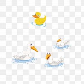 Duck - Duck Domestic Goose U9d28u5b50, U9d5d PNG