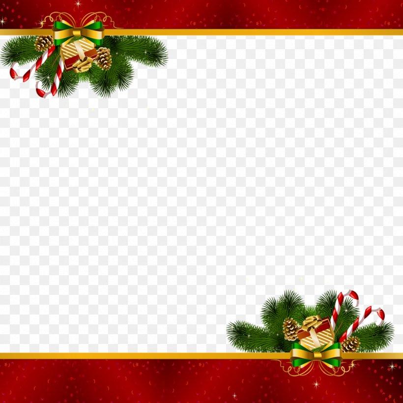 Christmas Decoration Santa Claus Christmas Ornament, PNG, 1000x1000px, Christmas, Aquifoliaceae, Aquifoliales, Border, Christmas Decoration Download Free