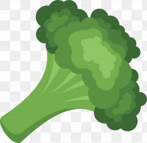 Broccoli Vegetable Broccolo - Cream Of Broccoli Soup Vegetarian Cuisine Vegetable Vector Graphics PNG