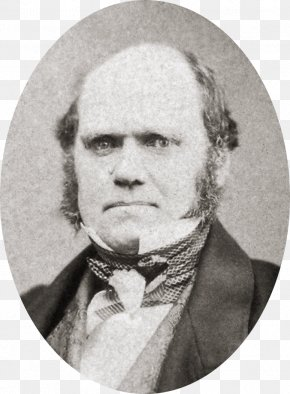 Agricultural - Charles Darwin And The Tree Of Life On The Origin Of Species Evolution Natural Selection PNG
