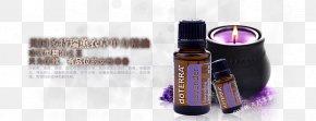 Lavender Essential Oil Lavender Lights - Lavender Oil Essential Oil PNG