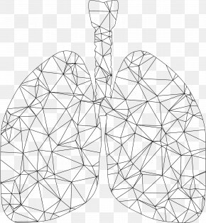 Lungs - Lung Triangle Polygon PNG