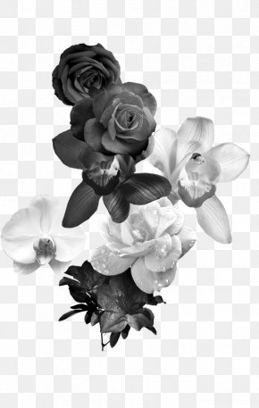 Black And White Roses - Black And White Flower Monochrome Photography PNG
