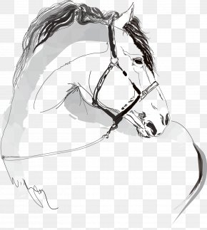 Galloping Horse - Horse Illustration PNG