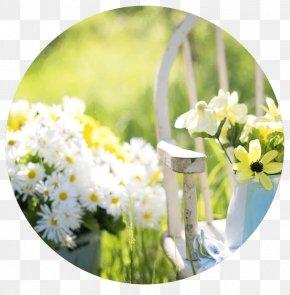Garden Shed - Garden Furniture Kays Florist Shed Gardening PNG