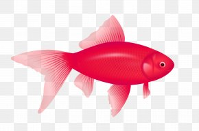 Purple Fish Image - One Fish, Two Fish, Red Fish, Blue Fish Clip Art PNG