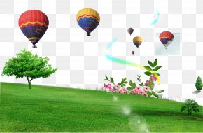 Grass Balloon - Outdoor Recreation Landscape Download PNG