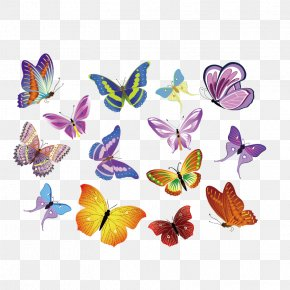 Colorful Butterfly Vector Material - Royalty-free Euclidean Vector Clip Art PNG