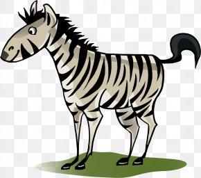 Zebra - Lion Letter Zebra English Alphabet PNG