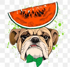 Pug Vector Watermelon - Pug Pet PNG