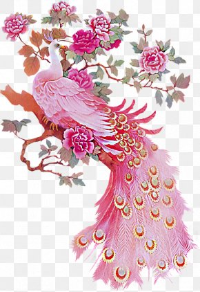 Peacock Peony - Bird Peafowl Feather Pink Paper PNG