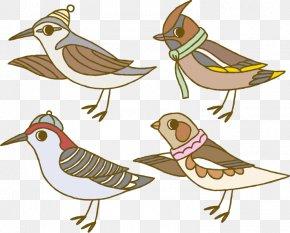 Vector Cartoon Winter Animal Bird Sparrow - Bird Euclidean Vector Clip Art PNG