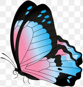 Butterfly Blue Pink Transparent Clip Art Image - Clip Art PNG