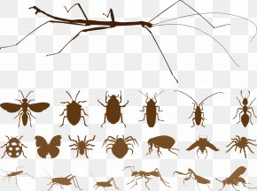 Silhouettes Brown Insect Vector - Mosquito Insect Spider Euclidean Vector PNG