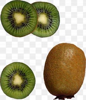 Kiwi Image, Free Fruit Kiwi Pictures Download - Smoothie Milk Kiwifruit Muffin Ingredient PNG
