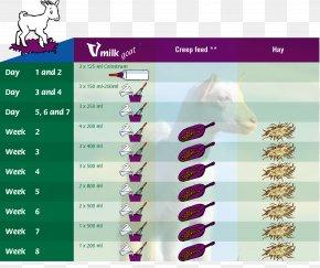 Goat Eat - Goat B.V. Sheep Milk Lactation PNG