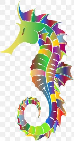 Seahorse - Seahorse Clip Art PNG