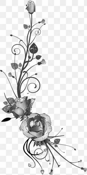 Flower - Floral Design Photography Flower Clip Art PNG