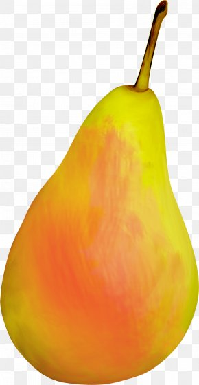 Orange Pears - Pear Still Life Photography PNG