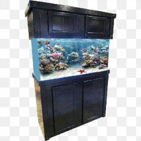 Fish Tank - Reef Aquarium Cabinetry Aquarium Furniture Shark Reef At Mandalay Bay PNG