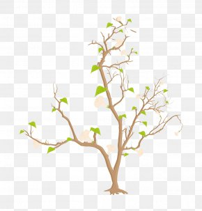 Tree - Silhouette Branch Illustration PNG