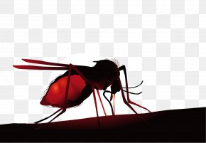 Vector Cartoon Creative Lifelike Flies - Mosquito Net Insect Zika Virus Hematophagy PNG