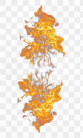 Flame,fire - Light Flame Fire Combustion PNG