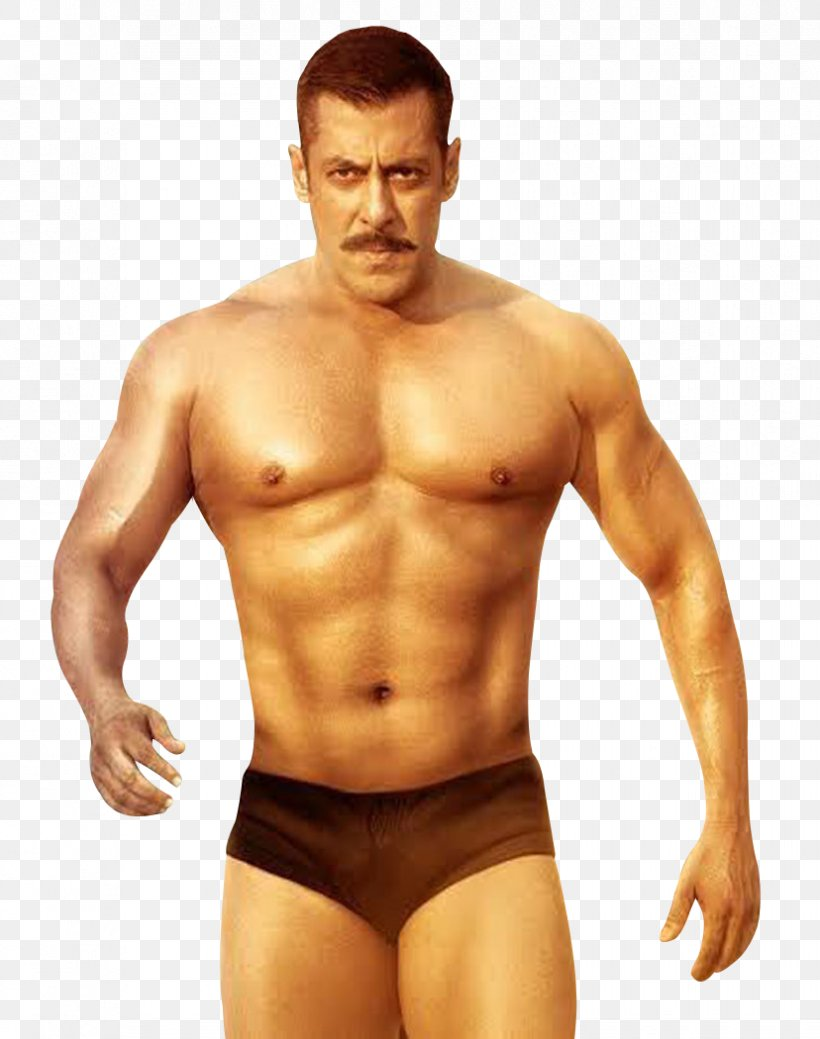 Salman Khan Sultan Action Film Bollywood, PNG, 828x1050px, Watercolor, Cartoon, Flower, Frame, Heart Download Free