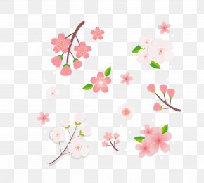 Vector Color Cherry Blossom Decorative Pattern Japan - Cherry Blossom Pink Clip Art PNG