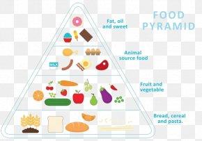 Cartoon Healthy Diet Nutrition Pyramid - Food Pyramid Euclidean Vector Healthy Eating Pyramid Nutrition PNG
