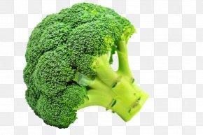 Broccoli - Broccoli Flavor Taste Vegetable Sulforaphane PNG