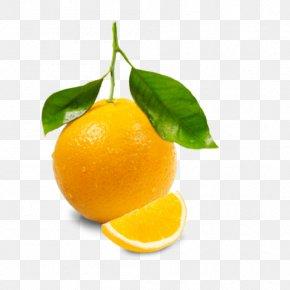 Pink Cherry - Orange Juice Juicer Lemon Squeezer Grapefruit Juice PNG