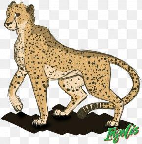 Cheetah - Cat Cheetah Felidae Leopard Lion PNG