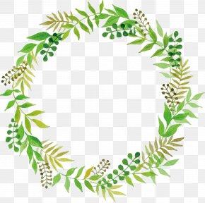 Leaves Floral Border - Wedding Green PNG
