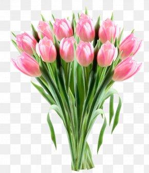 Pink Tulips Transparent Clipart Picture - Tulip Flower Clip Art PNG