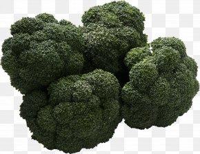 Broccoli Image - Sour Organic Food Bitter Taste PNG