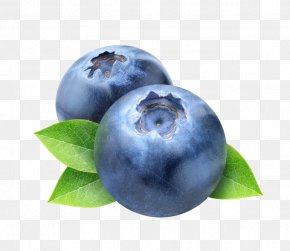 Blueberry Photos - Blueberry Frutti Di Bosco Clip Art PNG