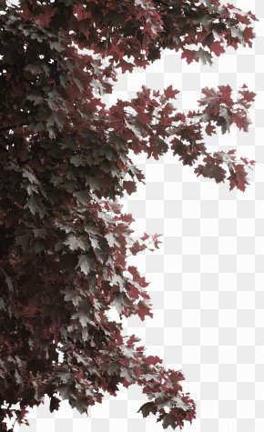Red Simple Tree Decoration Pattern PNG