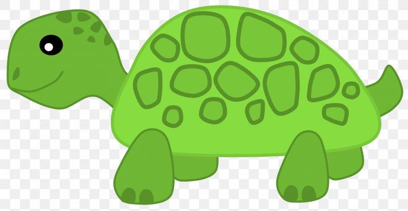 Turtle Herbivore Clip Art Png 1969x1020px Turtle Carnivore